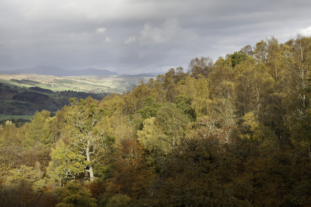 View of trees and hills from the path at Birks of Aberfeldy showing clouds and a band of sunlight.